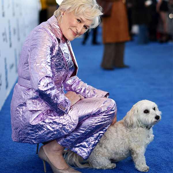 Glenn Close, dog, 2019 Film Independent Spirit Awards